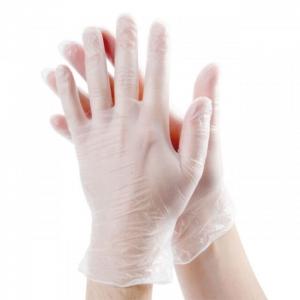 Vinyl Gloves Powdered (100)