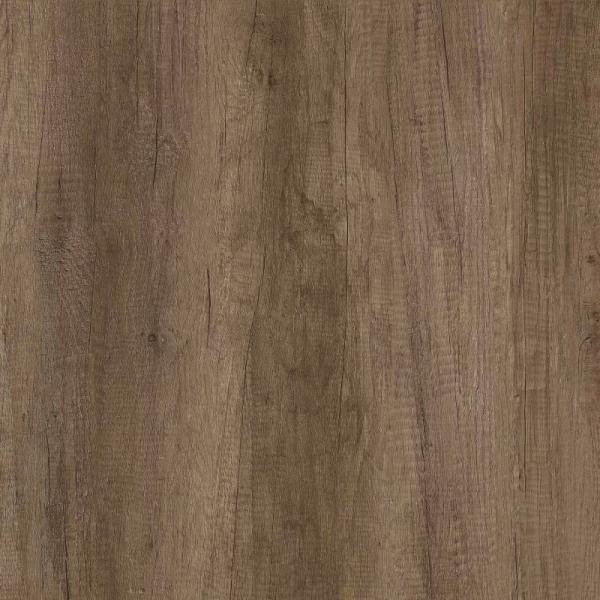 Nebraska Oak